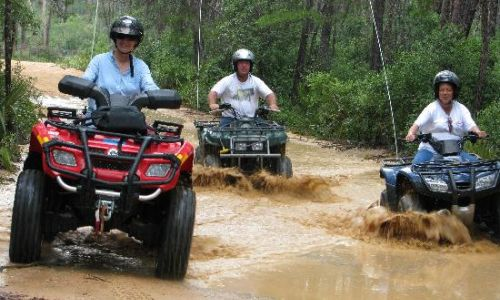 ocala national forest 4 wheeling