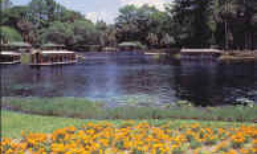 Silver Springs Botanical Garden in Ocala