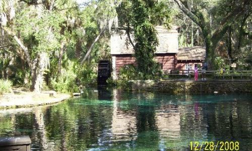 juniper whellhose and springs in ocala